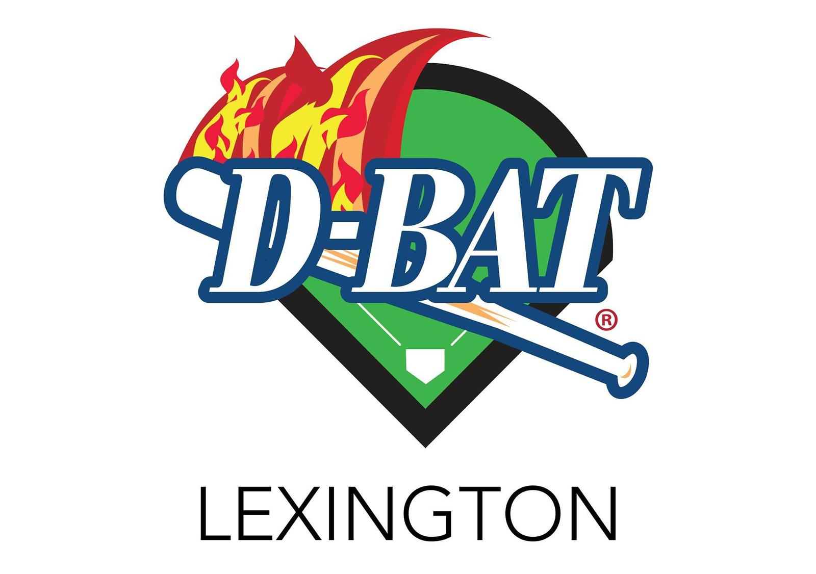 D-Bat-Logo-46Solutions